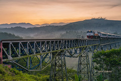 cikubang (sandilesmana28) Tags: sunrise train rel landscape steel iron fog tree green
