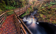 Autumn Walks (peter_beagan) Tags: autumn leaves water waterfall woods forest longexposure rocks moss colour canon canon70d formatthitechfilters ireland irishautumn antrim glenariff sigma 1020