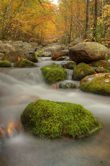 ''eau de source!'' (pascaleforest) Tags: canada québec fall water eau nikon nature passion charlevoix mousse automne rock roche chute paysage landscape