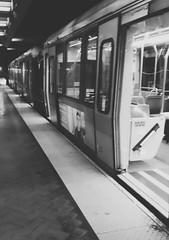 (sftrajan) Tags: sanfrancisco muni metro bw filter bredacar transit transport санфранциско