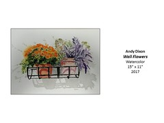 """Wall Flowers • <a style=""""font-size:0.8em;"""" href=""""https://www.flickr.com/photos/124378531@N04/37106284333/"""" target=""""_blank"""">View on Flickr</a>"""