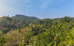 26.06-Ella-Rock-Sri-Lanka-canon-1500px-001