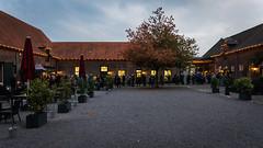 Völkerball im Eltzhof (marcelfromme) Tags: nikon nikond500 sigma concert eltzhof coverband rammstein völkerball stage lightroom