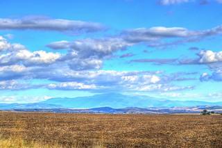 Blue on the horizon