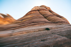 Magic of the Wave - Coyote Butte North - Vermilion Cliffs - in the desert (The Shared Experience) Tags: wave d800 2014 fall landscape desert coyotebutte az ut usa