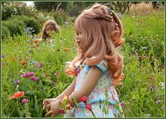 Blumenversteckspiel ... (Kindergartenkinder) Tags: gruga grugapark essen kindergartenkinde annette himstedt dolls tivi