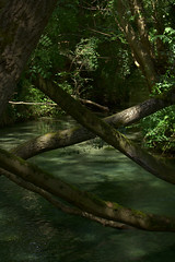 rivier2