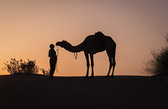 Rajasthan - Jaisalmer - Desert Safari with Camels-58