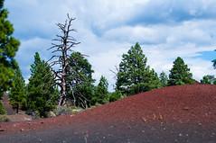 565-14-DS4_3761 (vgwells) Tags: sedona arizona grand canyon national park scottsdale montezuma castle jerome verde railroad sunset crater wupatki
