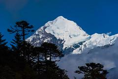 Gocha-la trek in Sikkim, India (David Ducoin) Tags: asia dzongri gochala hike himalaya india kangchenjunga landscape mountain nationalpark sikkim snowcap trek gangtok in