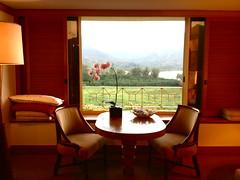Kauai Hotel Room (jaclyn.zepnick) Tags: kauai stregis princeville resort hotel room view orchid ocean grass