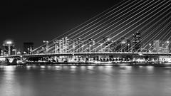 Striped Rotterdam (frank_w_aus_l) Tags: rotterdam erasmus bridge architecture skyline stars nikon d7000 bw blackandwhite netherlands netb noiretblanc city cityscape reflection longexposure zuidholland niederlande nl