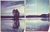 Island reflection (Maija Karisma) Tags: polaroid instant pola littlebitbetterscan nature graflex graflexpacemakerspeedgraphic 559 4x5 largeformat autumnpolaroidweek roidweek2017 diptych