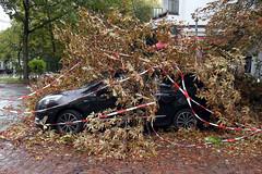 """Sturmschäden durch """"Xavier"""" (Miwedi) Tags: 2017 berlin kreuzberg strurmtief xavier deutschland sturmschäden umgestürzt baum stormdamages auto kraftfahrzeug beschädigt äste"""