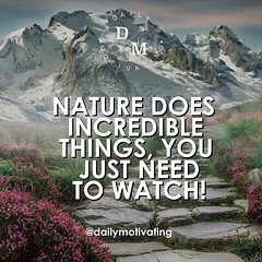 Nature does incredible things, you just need to watch! 👌🙏 #dailymotivating (dailymotivating) Tags: motivation motivational success successes work grind workhard hardwork daily entrepreneur business doit