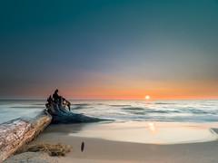 Wood,Feather,Water and Fire (MacDonald_Photo) Tags: camping jamieamacdonald kids beach sunset sl33stak zd lightroom oly olympus zuiko michigan getolympus omd omdem1mkii μ43photography μ43 em1mkii omdem1markii 714mm mzuiko714mmf28pro nisi nisifilters grandhaven puremichigan vanguardaltapro vanguard water lakemichigan