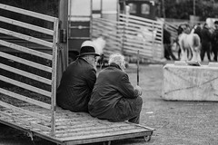 Old-timers time out (Frank Fullard) Tags: frankfullard fullard candid street rest timeout break oldtimer elderly older farmer ballinasloe galway horse fair tired truck horsebox trailer talk irish ireland monochrome blackandwhite blanc noir story storytelling