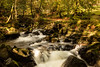 Autumn arriving at Rydal hall (Esox2402) Tags: autumn waterfall water rocks leaves canon6d 1740mm river trees