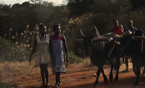 Roadside Madagascar