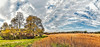 IMG_0790-93Ptzl1scTBbLGER2 (ultravivid imaging) Tags: ultravividimaging ultra vivid imaging ultravivid colorful canon canon5dmk2 clouds fields farm pennsylvania pa panoramic painterly sky autumn trees autumncolors afternoon yellow rural scenic vista stormclouds path