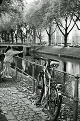 bike@Kö, Düsseldorf 5 (Amselchen) Tags: bicycle kö düsseldorf germany mono monochrome bnw blackandwhite trees season autumn fall bokeh blur dof depthoffield fujifilm fujifilmxseries fujinon xt2 fujifilmxt2 xf35mmf14r