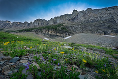 Over the Next Ridge (JeffMoreau) Tags: highline trail glacier national park montana explore zeiss sony 16mm fe full frame ridge rockies rocky mountain wildflower
