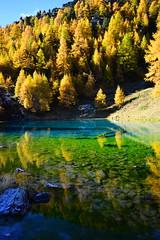 Lac Bleu in Arolla (barbarasteinemann) Tags: lacbleu arolla eringertal valdherens bergsee see alpin schweiz wallis valais herbst lärchen