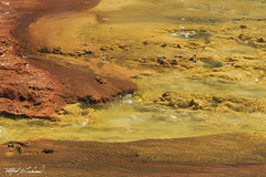 Channel_T3W0624 (Alfred J. Lockwood Photography) Tags: alfredjlockwood nature landscape abstract microbialmat geothermalrunoff color shapes patterns texture excelsiorgeyser midwaygeyserbasin yellowstonenationalpark summer morning wyoming