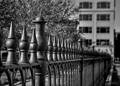 Fenced (myoldpostcards) Tags: photography iron fence railings narrow shallow depthoffield dof perspective aperture monochrome blackandwhite bw myoldpostcards randall randy vonliski fenced