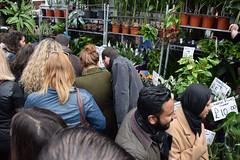 DSC_8293 London Columbia Road Flower    Market (photographer695) Tags: london columbia road flower market