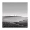 Jump Around (Nick green2012) Tags: square minimal blackandwhite lone tree tuscany landscape rohan reilly