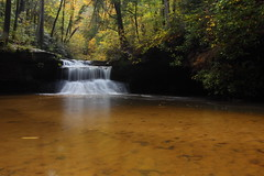 Creation color (MarcusDC) Tags: creationfalls fallfoliage fallcolor autumn redrivergorge cliftywilderness waterfall kentucky hiking explore204october262017