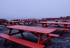 Off Season (Anne Marie Clarke) Tags: picnictables red gloomy fog closed lobstershackattwolights capeelizabethmaine restaurant