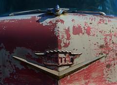 Bad Paint Job (davidwilliamreed) Tags: bad paint job cadillac car emblem hood ornament old rusty crusty metal peelingpaint abandoned neglected forgotten decay grunge rust patina simpsonfarm hallcountyga oxidized oxidation