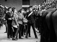 Black & White winners in the 2017 Army Photographic Competition (Defence Images) Tags: horses animals regiments london militarymusicians memorial irishguards householddivision horseguardsparade horseguards guards footguards band army blackwhite bw armyphotographiccompetition2017 defence defense uk british military unitedkingdom gbr