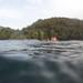 Snorkeling at Anse Noire, Les Anses-d'Arlet, Martinique