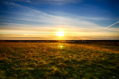 Impossible to watch a sunset like this and not dream! (_Amritash_) Tags: sunset sunsetlights sunsetcolors sunsetsky grass grassy evening iceland southiceland roadtrip seljalands parking flare travel
