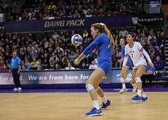 UW UCLA-FT4I1242 (Pacific Northwest Volleyball Photography) Tags: volleyball ncaa pac12 pac12vb uwhuskies washington ucla