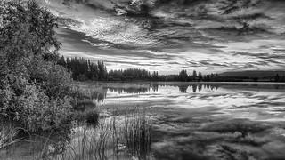 L'étang de Frasne au petit jour