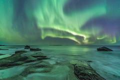 'Arctic Coast' - Lofoten, Norway (Kristofer Williams) Tags: aurora night sky stars nightscape landscape seascape coast beach waves sea water northernlights auroraborealis lofoten norway uttakleiv