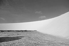 Just a matter of scale (alestaleiro) Tags: bw bianconero dunes dunas sand arena areia jericoacoara jeri ceará nordeste pretoebranco blackwhite blancoynegro monochrome monocromo nature natureza naturaleza desert dedsierto brasil brazil alestaleiro