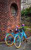 The Blue Bicycles (Maya K. Photography) Tags: bicycles bluebicycles centralpark newyork ny nyc usa us america unitedstatesofamerica park building architecture autumn manhattan walk colors majkakmecova nikon nikond5000 nikkor bike