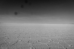 A look at the salt flats through my dirty lens.