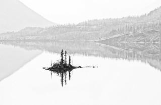 Wild Goose Island Reflection