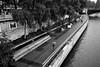 Paris (michael.mu) Tags: paris leica m240 france seine rain blackandwhite bw streetphotography silverefexpro 35mm leicasummicronm1235mmasph leicasummicron35mmf20asph