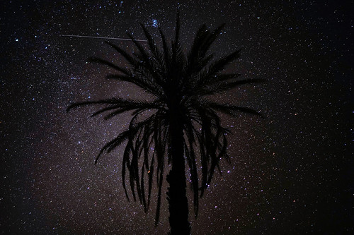 Starry Night in Sahara