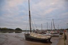 Early evening at the riverside, Woodbridge. 08 10 2017 (pnb511) Tags: suffolk rurallandscape riverside tidal boats quay eastanglia riverdeben masts reflections sunshine mud dock alpha bawley
