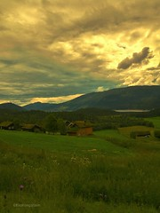 I'm in love ❤ Norway in my heart forever. (evakongshavn) Tags: visitnorway norway norge landscapephotography landscape landschaft landskap natur nature naturbilder naturephotography naturelovers naturaleza naturphotography green sky clouds grass mountain tree field road