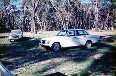 Volvos Mares Forest 1994 (55pmh) Tags: collection 1988 1999 by paul maresforest wombeyancaves maresforestroad 35mm film retro old richlands taralga 1989 1990 1991 1992 1993 1994 1995 1996 1997 1998 maresforestnationalpark southernhighlands newsouthwales ashwood oldphoto volvo volvos oldvolvo
