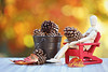 Selecting the perfect pine cones (Through Serena's Lens) Tags: stilllife fall autumn mannequin pinecones adirondack red chair wood pail leaves bokeh dof outdoor canoneos6dmarkii